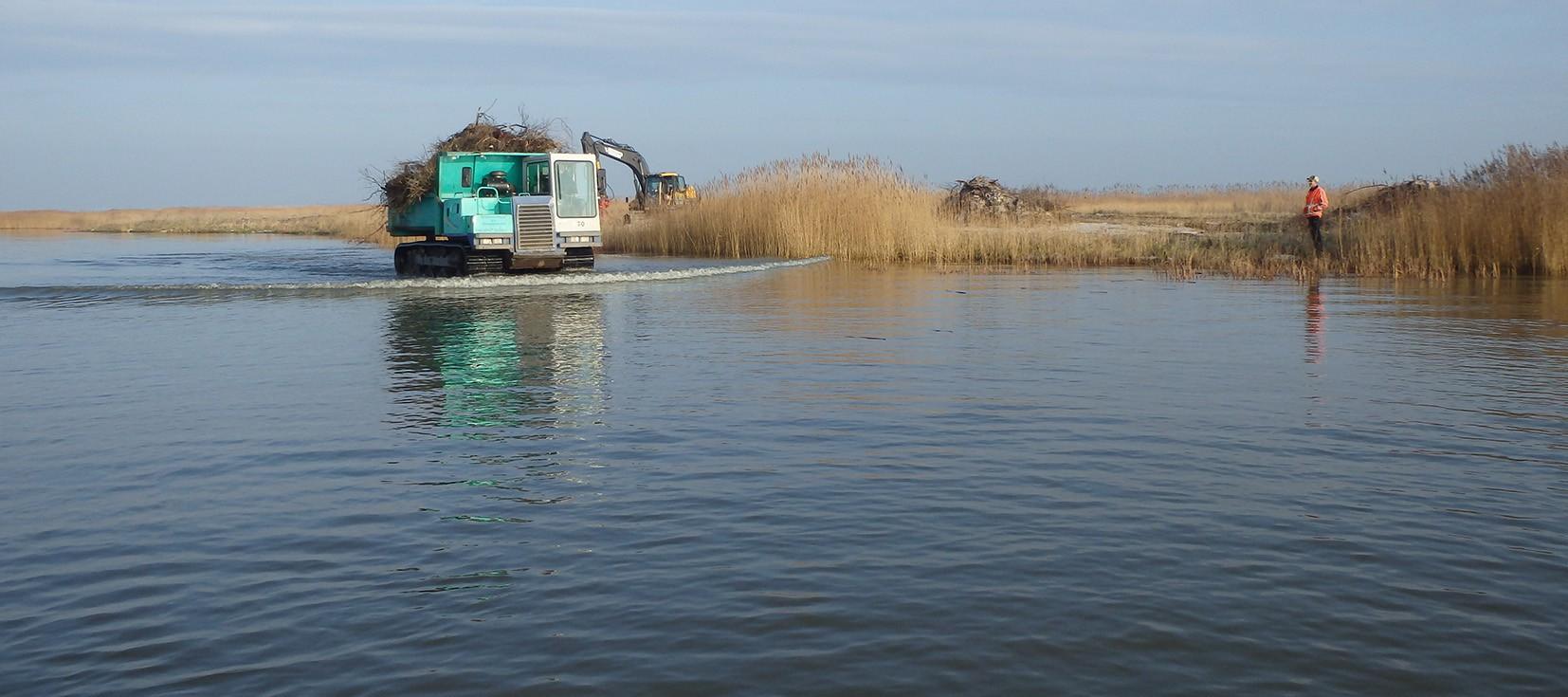 Bescherming van IJsselmeerkust door It Fryske Gea