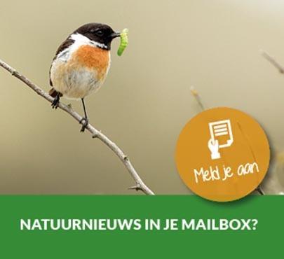 Nieuwsbrief It Fryske Gea