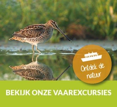 Vaarexcursie Friesland
