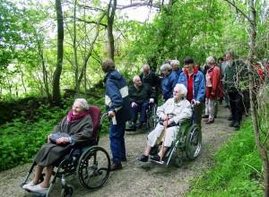 rolstoelpad in It Fryske Gea