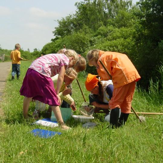 natuureducatie bij It Fryske Gea