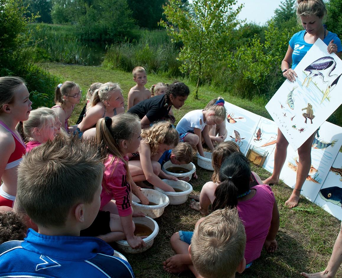 Schoolreisje in Nationaal Park De Alde Feanen