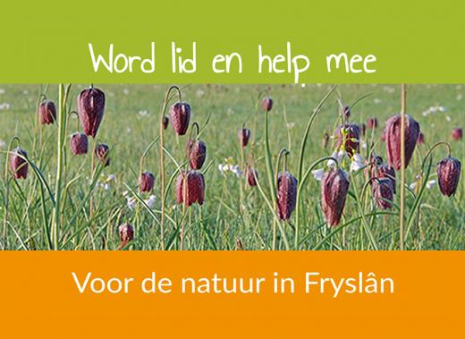 lid worden van It Fryske Gea