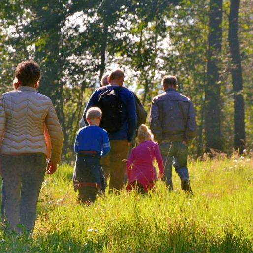 wandelen in It Fryske Gea