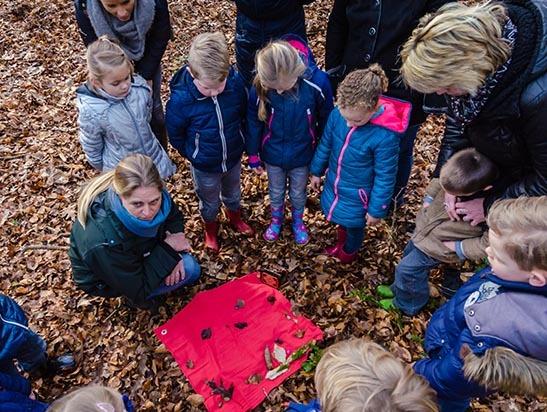 vrijwilliger bij It Fryske Gea