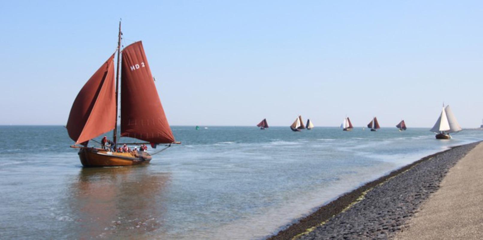 Zeiltocht IJsselmeer Vismigratierivierdag