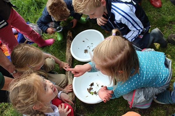Waterdiertjes zoeken voor kids