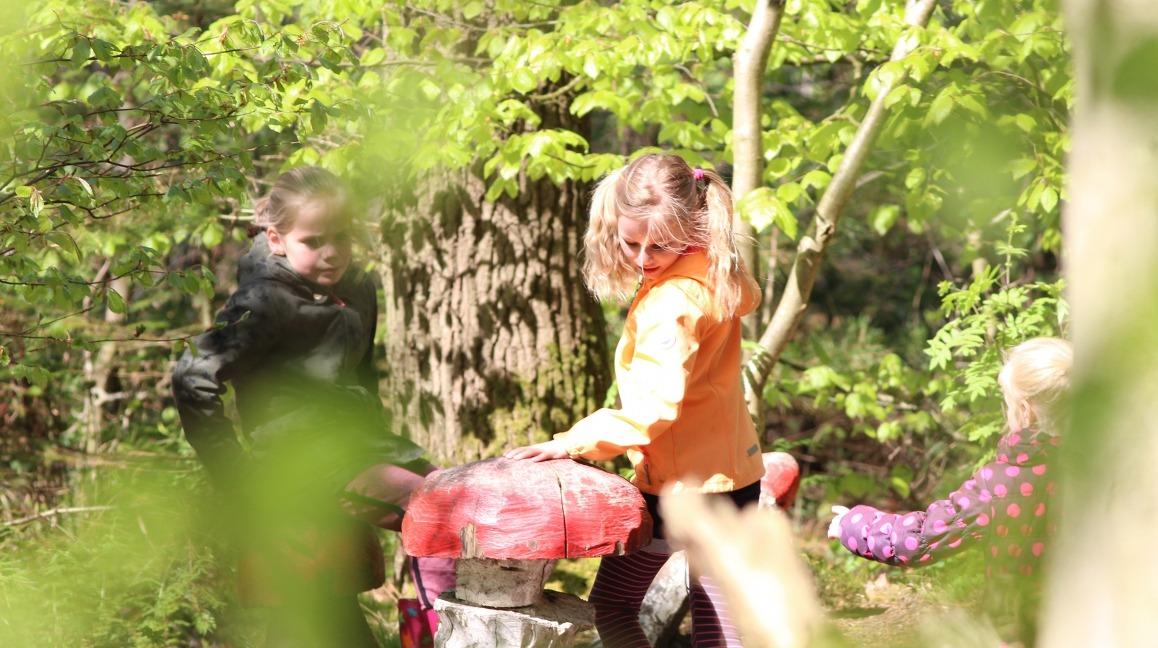 Kinderen bij paddenstoel in het bos