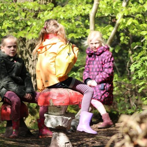 Activiteiten herfstvakantie Fryslân