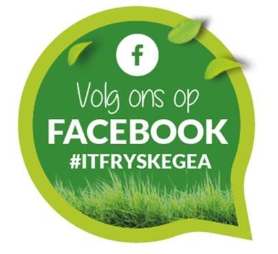 Facebook It Fryske Gea