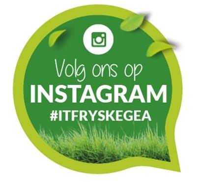 Instagram It Fryske Gea