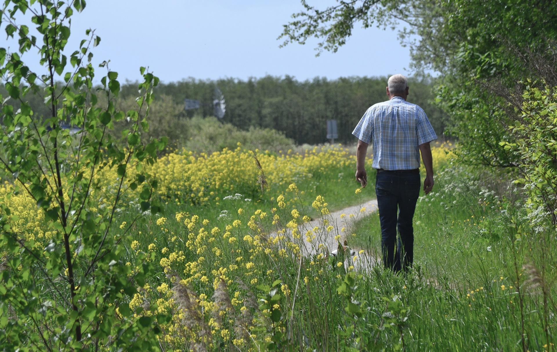 Wandeling Natuur It Fryske Gea