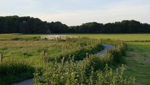 Rikkinge bij Oosterwolde