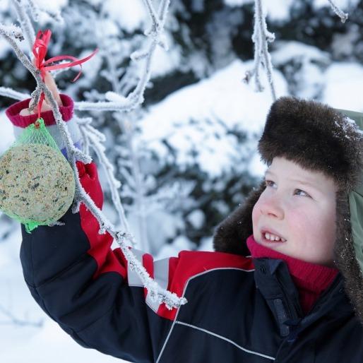 Jongen met vetbol in de sneeuw