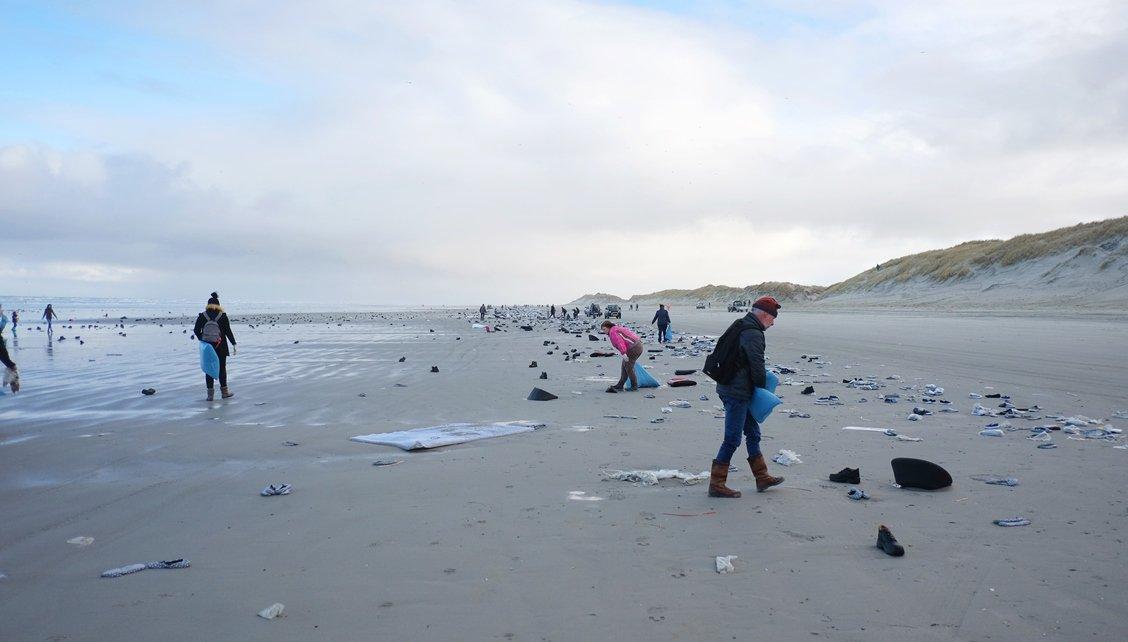 vrijwilligers helpen met opruimen waddenkust