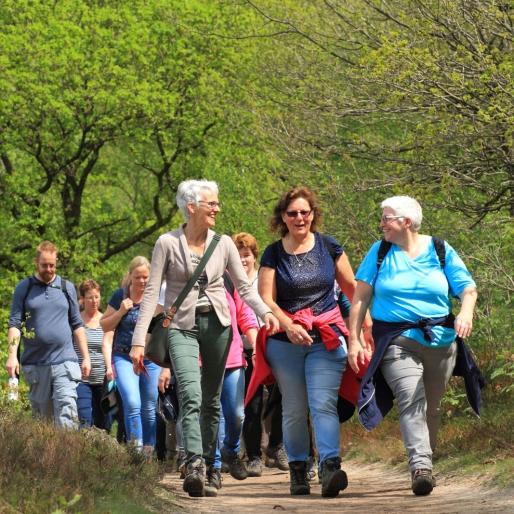 wandeltocht friesland (fotograaf: martijnvandervaart.nl)