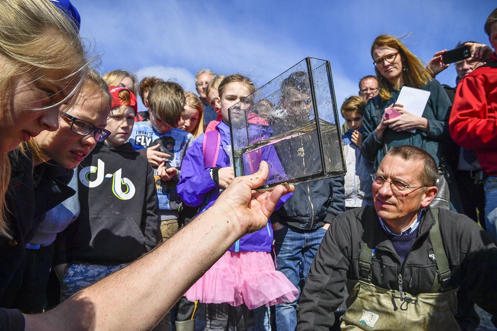 Scholenprogramma Vismigratierivier