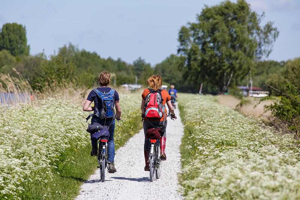 fietsexcursie It Fryske Gea