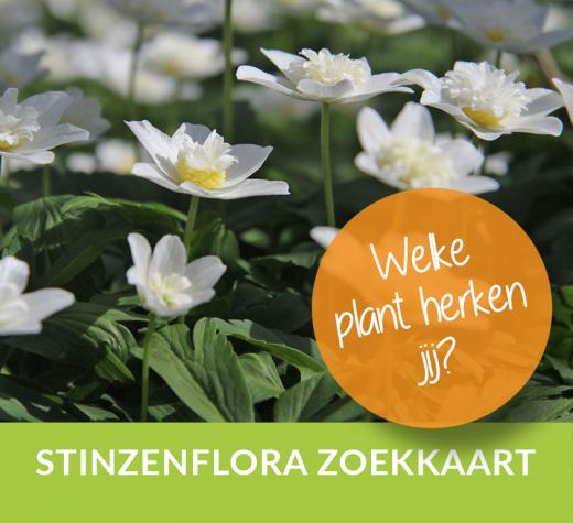 stinzenplanten zoekkaart