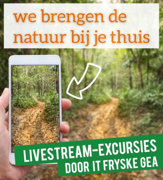 livestream-excursies door It Fryske Gea