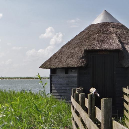 Vogelkijkhut Bocht fan Molkwar